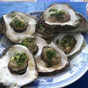 hào nướng tươi ngon, đặc biệt là khách gọi hải sản thì ra lấy hải sản tươi từ tàu vô chứ ko có sẵn nha nên thời gian chờ hơi lâu nhưng ăn rất tuyệt