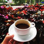 Cà phê mỗi buổi sáng ngắm thành phố trong trong gian ngập hoa còn gì tuyệt hơn.