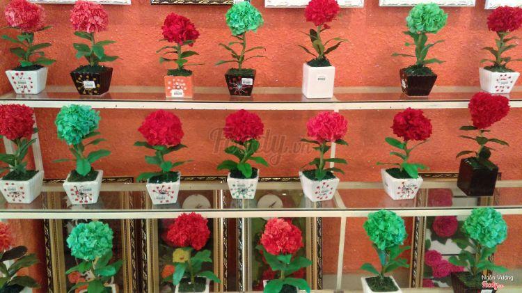 Rừng Hoa Khô Đà Lạt ở Lâm Đồng