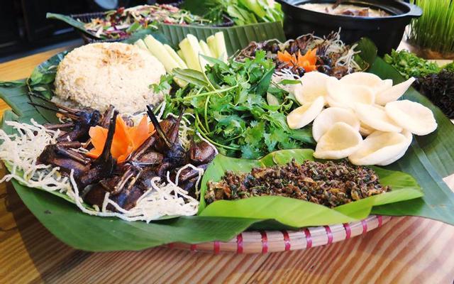 Quán Kiến - Món Ăn Việt Nam Độc Đáo - Tuệ Tĩnh