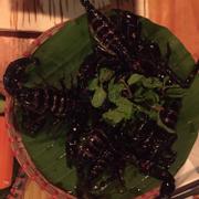 Mình cung bọ cạp - sao không được miễn phí khi ăn mó này nhể