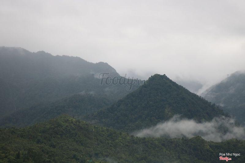 View từ Gem Valley Coffee