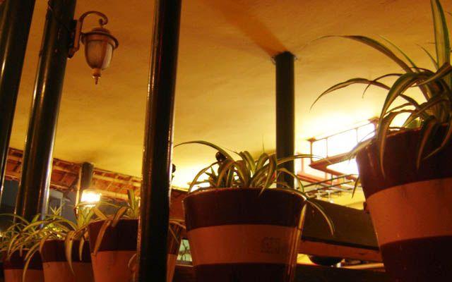 Cổ Ngư Cafe