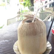 Dừa lạnh