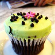 Cupcake mint chocolate chip