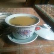 hạ cúc hoa trà