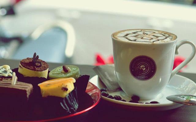 MDT - Many Different Tastes Coffee - Pandora City