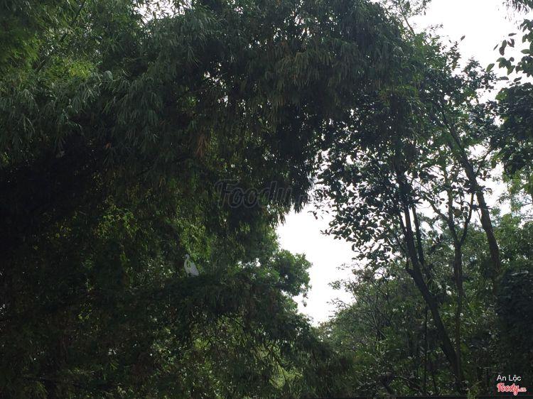 Khu Tưởng Niệm Chủ Tịch Hồ Chí Minh ở Cà Mau