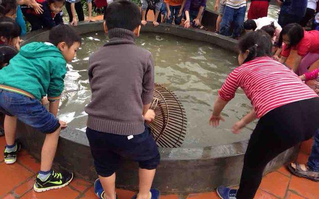 Trang Trại EcoGarden Thái Dương