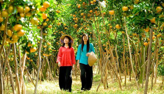 Vườn Trái Cây Nam Bộ