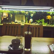 Ngắm cá thix thật, quán đẹp, học bài ổn ^_^