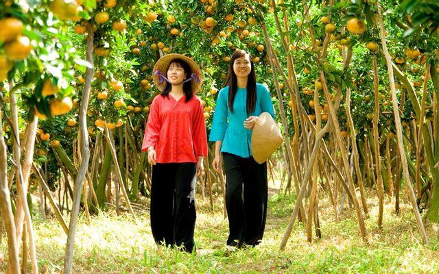 Năm Tuyết - Khu Du Lịch Sinh Thái ở Thị xã Cai Lậy, Tiền Giang ...