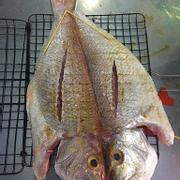 Cá chưa nướng