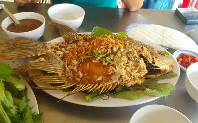 Ao Cá Chú Sang - Du Lịch Sinh Thái