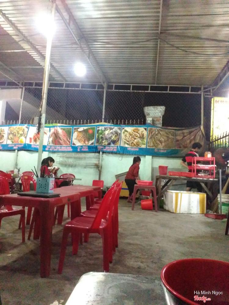 Ốc Sò Sinh Viên ở Khánh Hoà