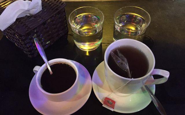 Cây Bàng Đổ Cafe