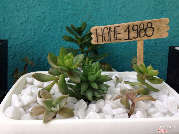 Home 1988 - Homestay ở Lâm Đồng