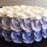 Rosedeluxe size20 màu tím đậm nhạt trắng