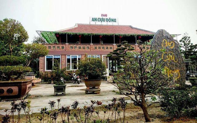 An Cựu Đông Cafe - Cafe Cây Cảnh