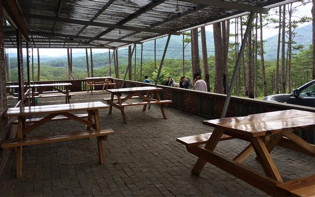 Zoodoo - Zoo & Cafe