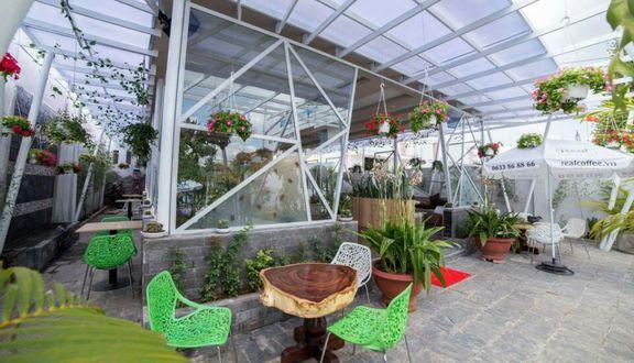 The Eco Cafe