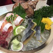 sashimi bụng cá hồi - cá trích ép trứng