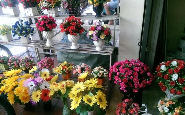 Shop Hoa Thạch Thảo