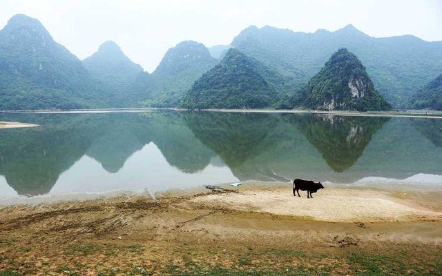 Hồ Tuy Lai