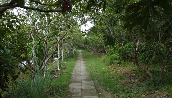 3 Xinh - Nhà Vườn Homestay