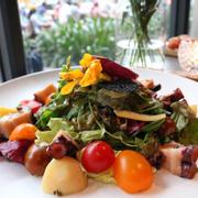 Salad bạch tuột