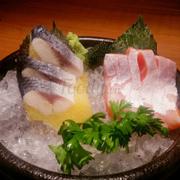sashimi bụng cá hổi - cá trích ép trứng