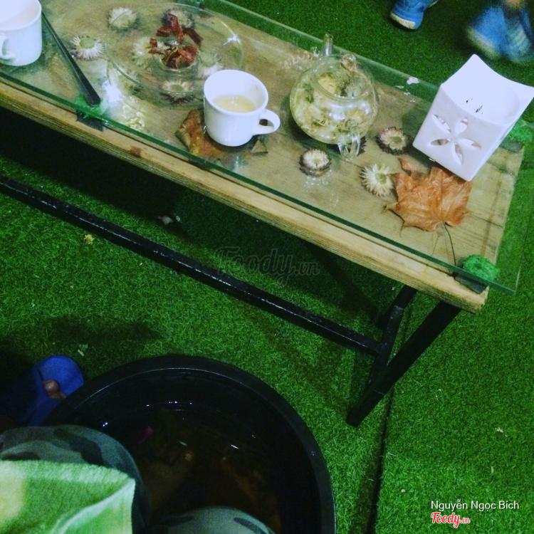 Có mứt có trà còn đc thư giãn với thảo mộc và tinh dầu lavender