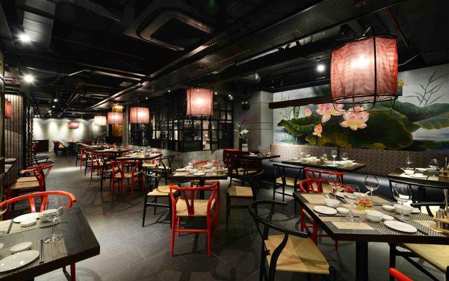 Ngô Dining - Nhà Hàng Dimsum