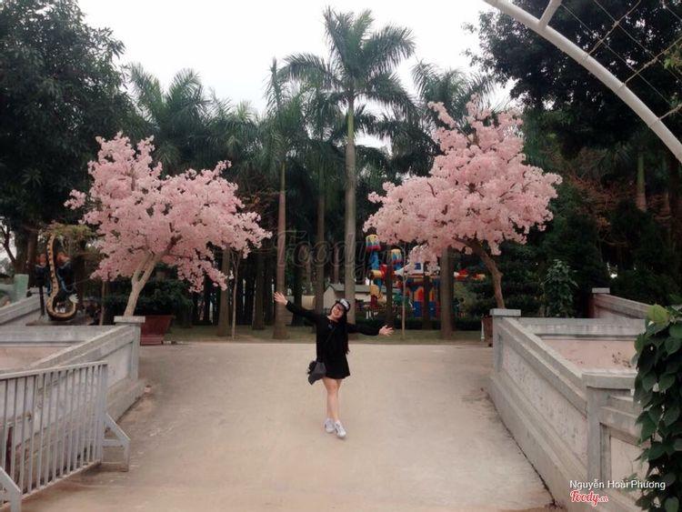 Khu du lịch Thiên Đường Bảo Sơn ở Hà Nội