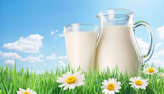 Phương Liên - Đặc Sản Sữa Tươi Ba Vì