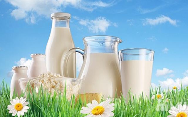 Minh Hằng - Sữa Tươi Ba Vì