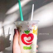 Y8 yogurt