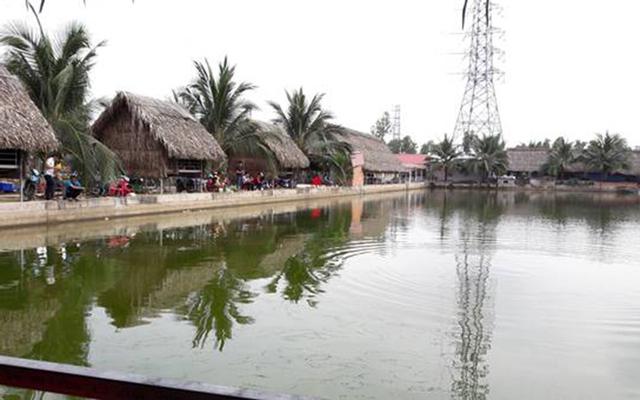 Ao Cá Vườn Dừa