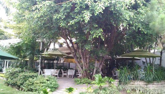Đồng Xanh Cafe - Lê Đức Thọ