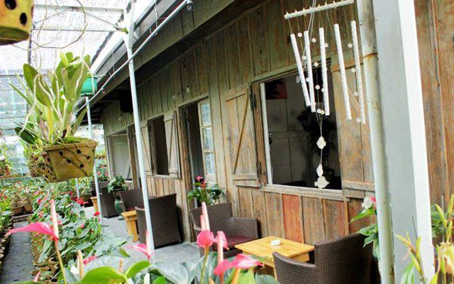 Home Cafe - Cô Giang