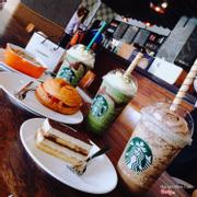 Starbuck Rex Hotel