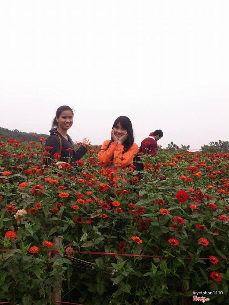 Bãi Đá Sông Hồng ở Hà Nội