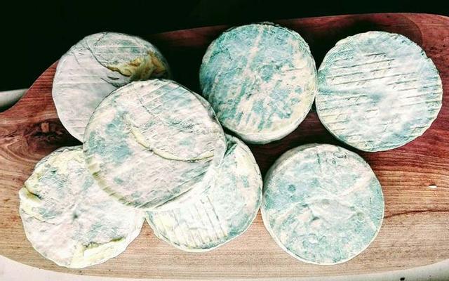 Familycheese - Phomai Cộng Hòa Séc