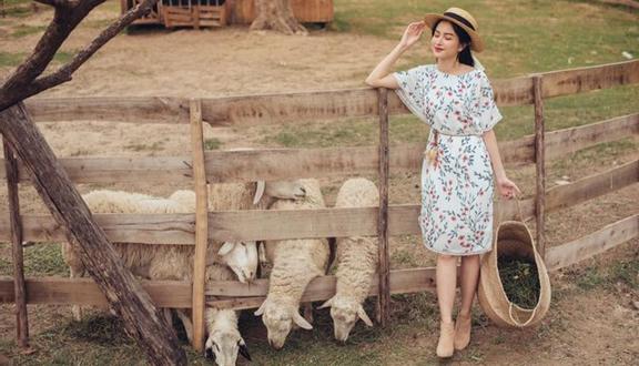 Mayy Fashion - Nguyễn Đình Chiểu