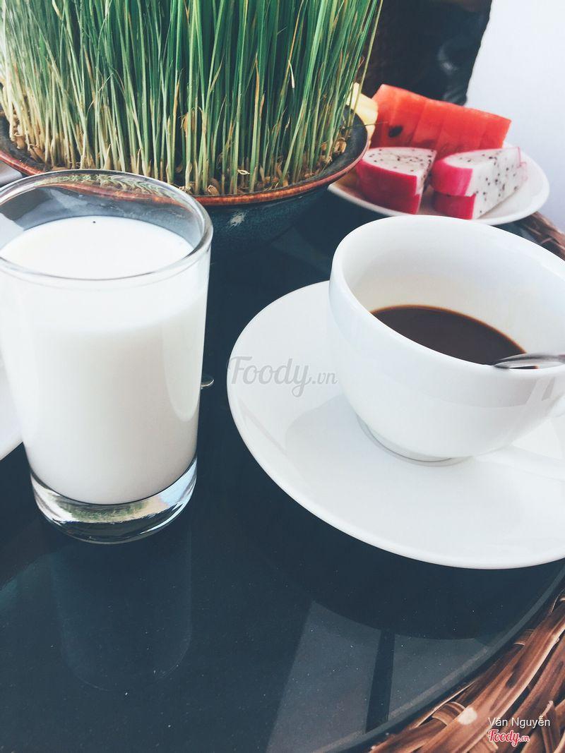 Sữa tươi và cà phê