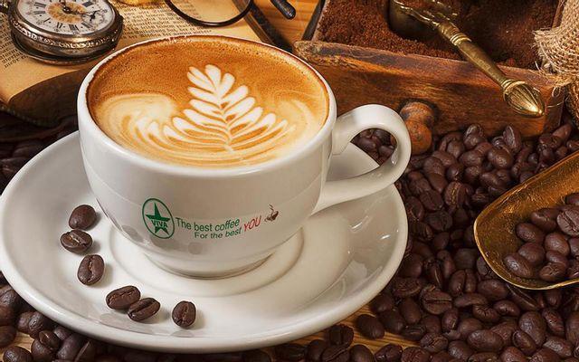 Viva Star Coffee - Y Jut
