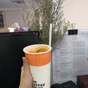 ly lớn giao tại công ty uống vẫn ngon. trà đào cam xả là món đặc trưng nhất của coffee house quán nào cũng có trừ coffee house phạm ngọc thạch. đào hộp nên chất lượng bình thường chỉ có nước pha ok thôi.