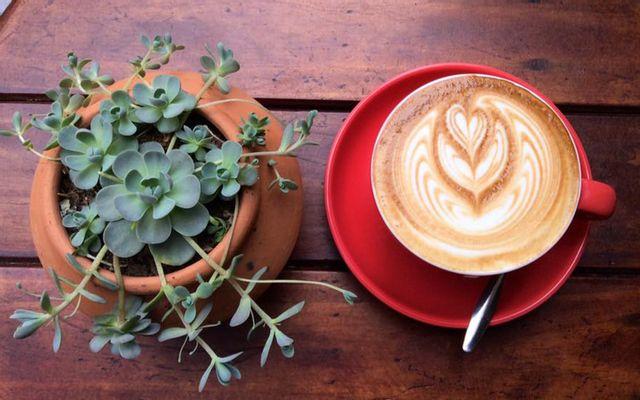 Phin Coffee - Espresso And Drip