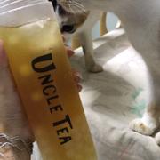Lục trà trân châu ở đây uống cực thích luôn :>