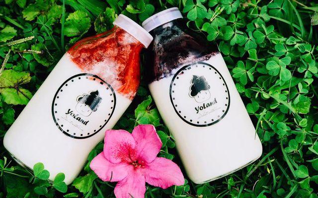 Sữa Chua Uống Yoland - Shop Online